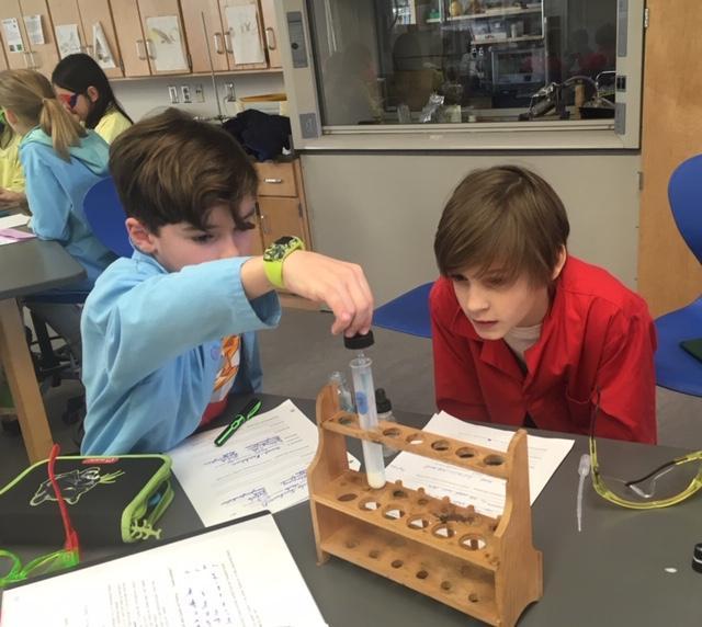 "STEM: ""Schnupperwoche"" At The Big School"